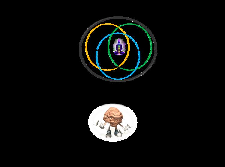 La evolución humana y sus realidades complejas - PARTE I