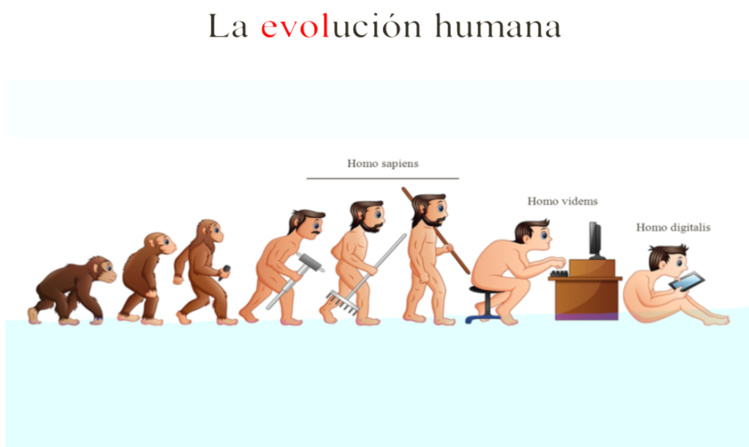 Imagen 3. La evolución humana