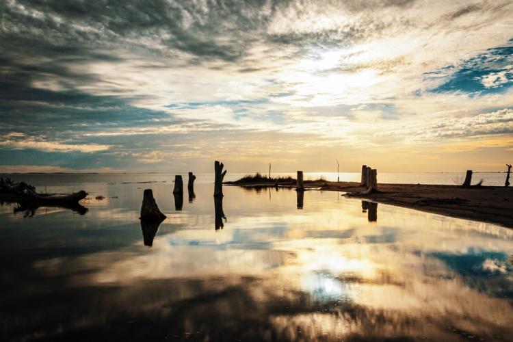 Photo by Rafael Hoyos Weht on Unsplash
