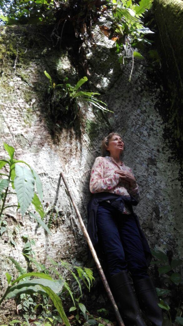 María del Carmen Nestares