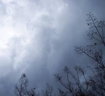 El invierno ¿la estación de la tristeza?