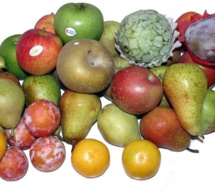 Las frutas y el ejercicio físico