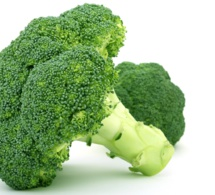 Brócoli, bróculi, brécol: El árbol vitamínico