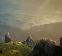 El Camino Del Corazón: Una metodología para despertar un nivel superior de Conciencia