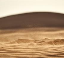 La promesa de arena