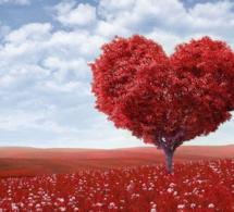 La necesidad hoy de amor universal e incondicional