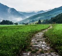 Muchos caminos, un solo destino