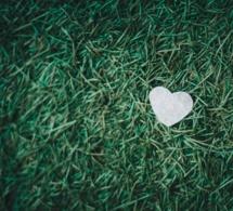 Una vida basada en el corazón