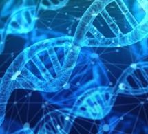 ¿Podemos cambiar nuestro ADN?