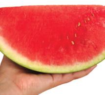 TOMATOIDE: La magia natural de las Frutas y las Hortalizas
