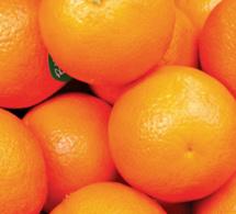 La naranja, nuestra fruta más emblemática